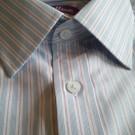 Trillium Tailor Shirt - stripe